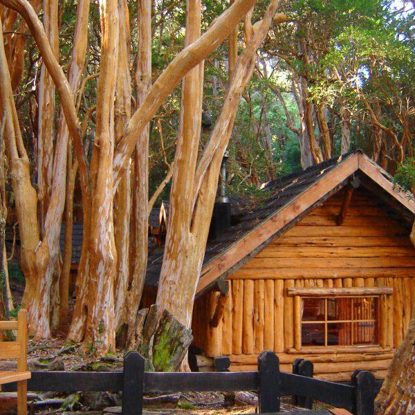 O Parque Nacional Arrayanes é a finalista das 7 Maravilhas Naturais de Argentina!